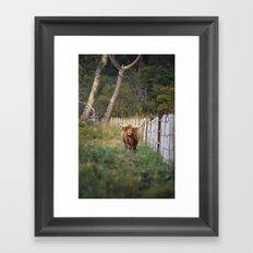 Beast of the Southern Wild II Framed Art Print