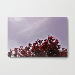 Red Treetops Metal Print