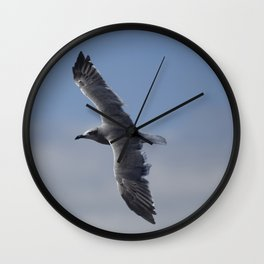 Immature Great Black Backed Gull 2!  The Gull Returns Wall Clock