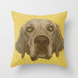 Golden Lab Print Throw Pillow