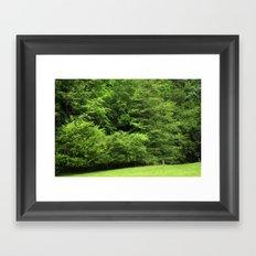 bosque Framed Art Print