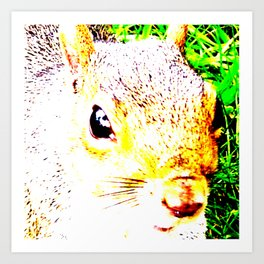 The many faces of Squirrel 1 Art Print