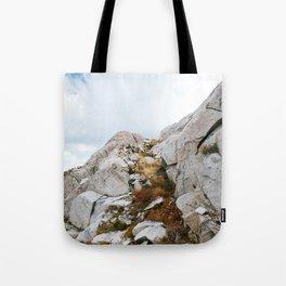 Desolation Mountainside Tote Bag