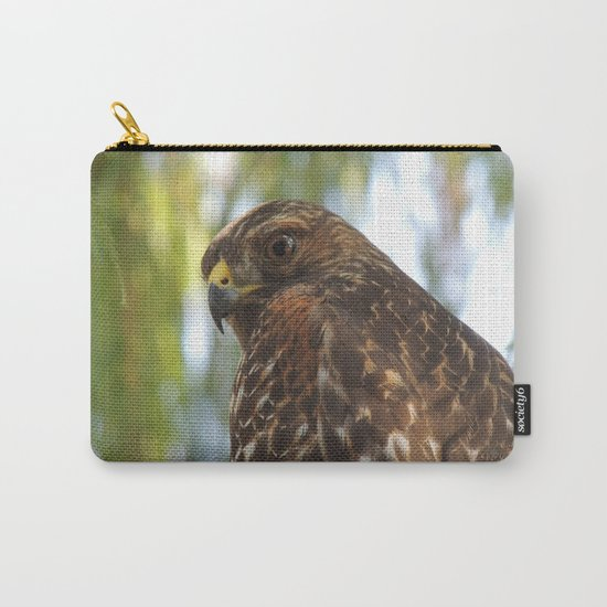 Young Red-Shouldered Hawk in a Desert Willow Carry-All Pouch