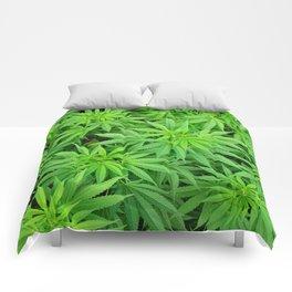 Marijuana Cannabis Weed Pot Plants Comforters