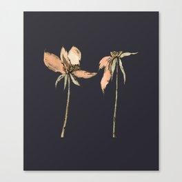 Toulhouse dark Canvas Print