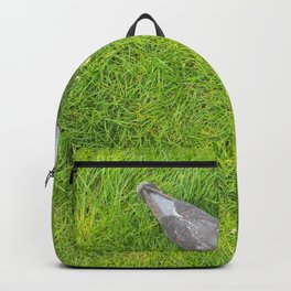 Two Pigeons Backpack