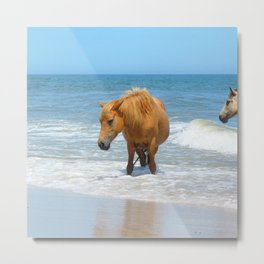 Watercolor Horse 48, Assateague Pony, Assateague, Maryland, Watery Relief Metal Print