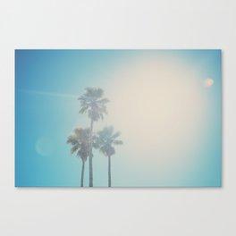 palm tree II ... Canvas Print