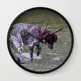 German Shorthaired Pointer Dog Wall Clock