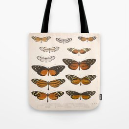 Vintage Scientific Anatomical Insect Butterfly Illustration Vintage Hand Drawn Art Tote Bag