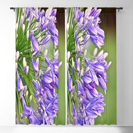 Agapanthus (African Lily) Blackout Curtain