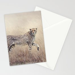 Cheetah on the savannah Stationery Cards