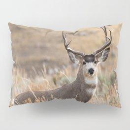 Mule Deer #01 Pillow Sham