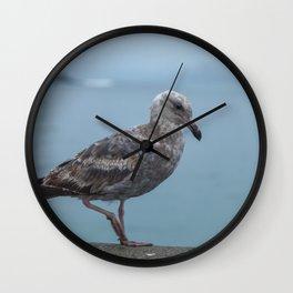 Young Gull Walking Wall Clock