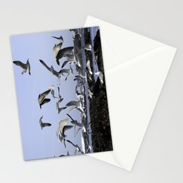 Seagulls fly Stationery Cards