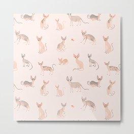 Sphynx Cats Metal Print