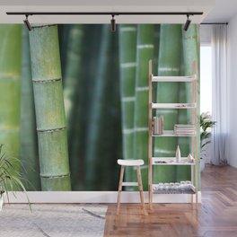 Relaxing Bamboo Wall Mural