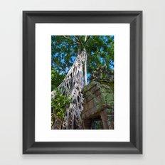Temple Banyan Tree Framed Art Print