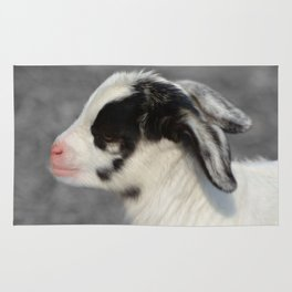 The Baby Goat Rug