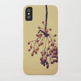 Autumn life (IV) iPhone Case