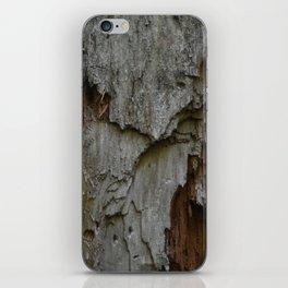 Kings Canyon Tree no.3 iPhone Skin