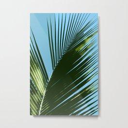 Palm Leaf Abstract Metal Print