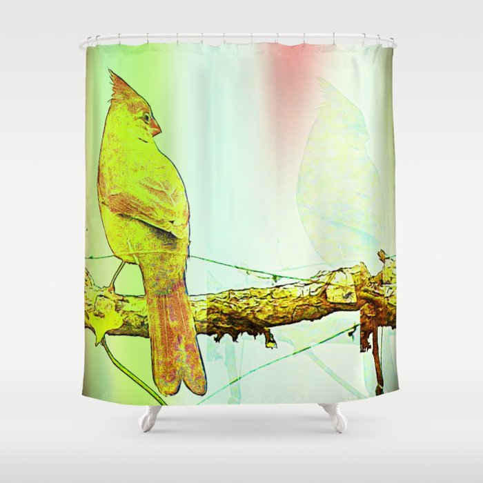 Soul Power (Cardinal) Shower Curtain