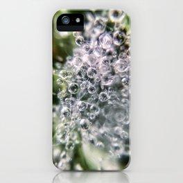 Dew Burst iPhone Case