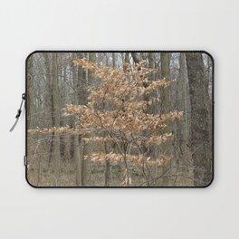 Beautful tree in John Heinz Wildlife Refuge Laptop Sleeve