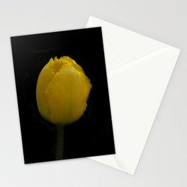 flowers of spring on black -63- Stationery Cards