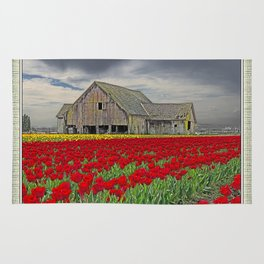 RED TULIPS AND BARN SKAGIT FLATS Rug