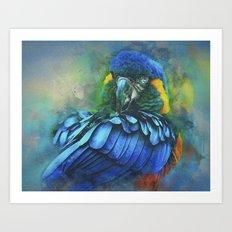 Macaw Magic Art Print