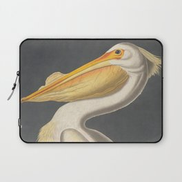 Vintage Illustration of a White Pelican (1863) Laptop Sleeve
