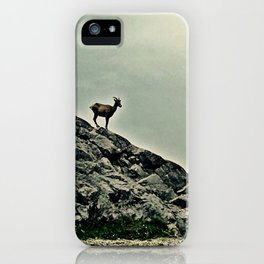 The Rains Came In Greys iPhone Case