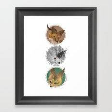 aesops  Framed Art Print