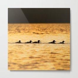 Birds Swimming At Sunset Reflection On The Lake #decor #society6 Metal Print