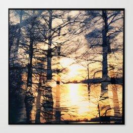 Lake Bolivar & Cypress (Double Exposure) Canvas Print