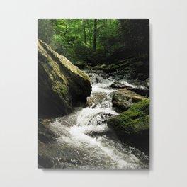 Downstream Metal Print