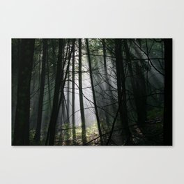 Encounters of the Vermont Kind Canvas Print