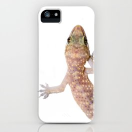 Gecko  iPhone Case