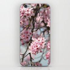 Pink Cherry Blossom Flowers Tree iPhone & iPod Skin