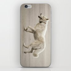 Whitey iPhone & iPod Skin