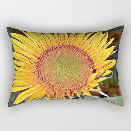 Floating SUN Rectangular Pillow