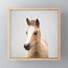 Baby Horse - Colorful Framed Mini Art Print