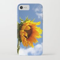 sunflower iPhone & iPod Cases featuring sunflower by Hannah