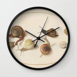 Naturalist Snails Wall Clock