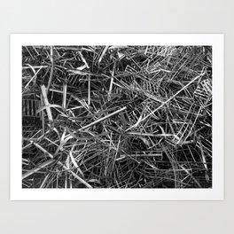 metal line Art Print