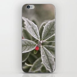cold iPhone Skin