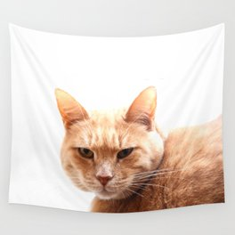 Red cat watching Wall Tapestry